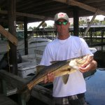 Fish Naples Florida